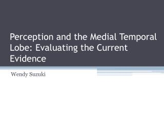 Perception and the Medial Temporal Lobe: Evaluating the Current Evidence
