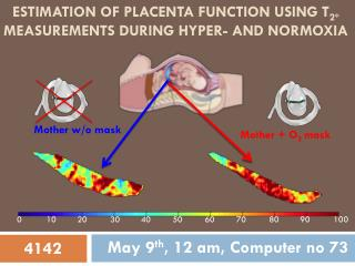Estimation of placenta function using  T 2* measurements during hyper- and  normoxia