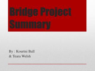 Bridge Project Summary
