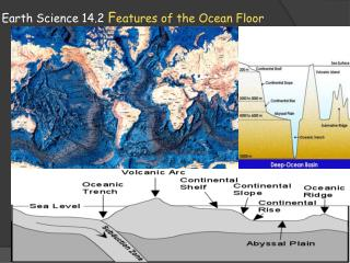 Earth Science  14.2  F eatures of the Ocean Floor