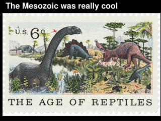 The Mesozoic was really cool