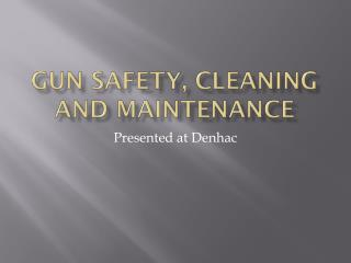 Gun safety, cleaning and maintenance