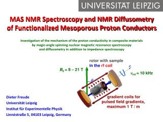MAS NMR Spectroscopy and NMR Diffusometry of Functionalized Mesoporous Proton Conductors