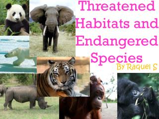 Threatened Habitats and Endangered Species
