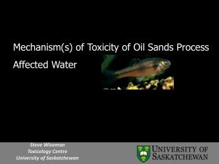 Mechanism(s) of Toxicity of Oil Sands Process Affected Water