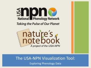 The USA-NPN Visualization Tool: Exploring Phenology  Data