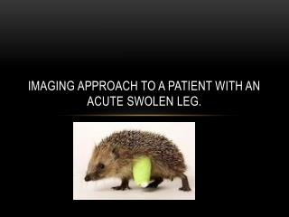 Imaging approach to a patient with an acute  swolen  leg.