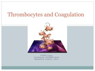 Thrombocytes  and Coagulation