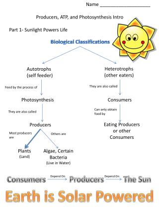 Name \_\_\_\_\_\_\_\_\_\_\_\_\_\_\_\_\_\_\_ Producers, ATP, and Photosynthesis Intro Part 1- Sunlight Powers Life