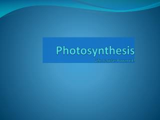 Photosynthesis Life Is Solar Powered!