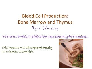 Blood Cell Production: Bone Marrow and Thymus Digital Laboratory
