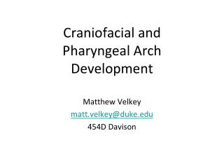 Craniofacial and Pharyngeal Arch Development