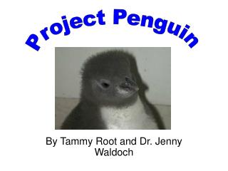 By Tammy Root and Dr. Jenny Waldoch