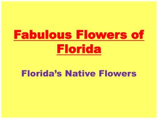 Fabulous Flowers of Florida
