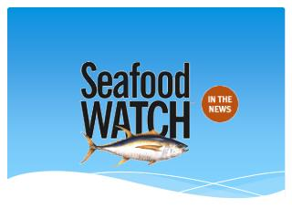 What is Seafood Watch?