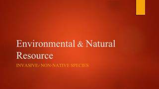 Environmental & Natural Resource