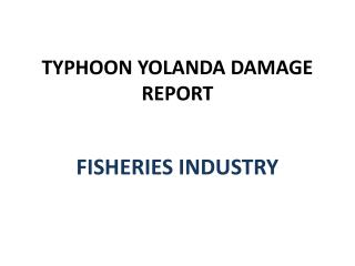 TYPHOON YOLANDA DAMAGE REPORT