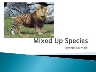 Mixed Up Species