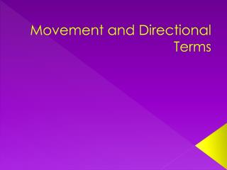 Movement and Directional Terms
