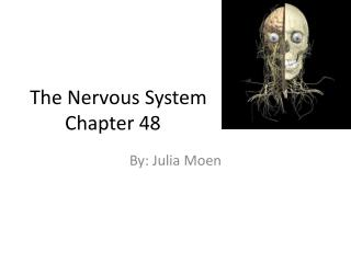 The Nervous System 	Chapter 48