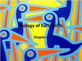 Biology of Early Birds