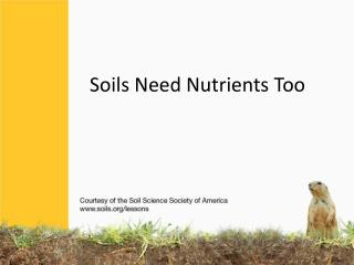 Soils Need Nutrients Too