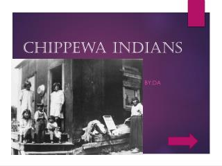 Chippewa INDIANS
