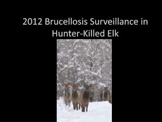 2012 Brucellosis Surveillance in Hunter-Killed Elk