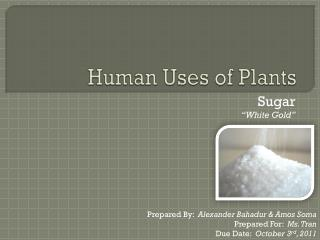 Human Uses of Plants