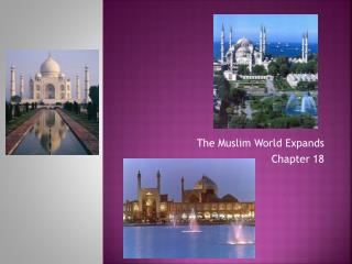 The Muslim World Expands Chapter 18