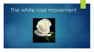 The white rose movement