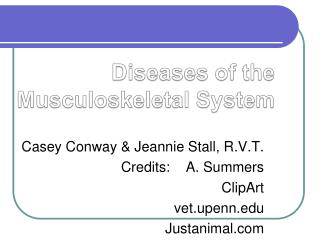 Diseases of the  Musculoskeletal System
