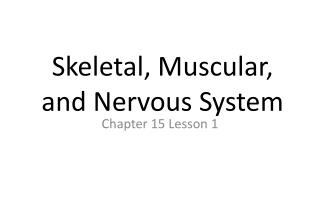 Skeletal, Muscular, and Nervous System