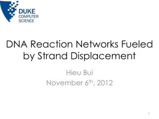 DNA Reaction Networks Fueled by Strand Displacement