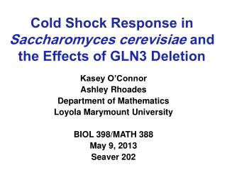 Cold Shock Response in  Saccharomyces cerevisiae and the Effects of GLN3 Deletion