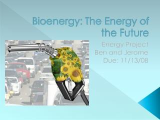 Bioenergy: The Energy of the Future