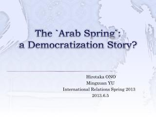 The `Arab Spring`: a Democratization Story?