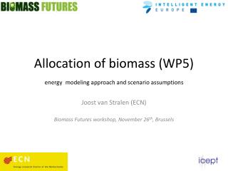 Allocation of biomass (WP5) energy modeling approach and scenario assumptions