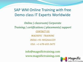 SAP WM Online Training with free Demo class IT Experts World