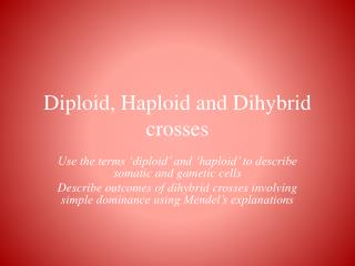 Diploid, Haploid and  Dihybrid  crosses