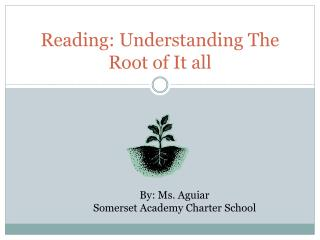 Reading: Understanding The Root of It all