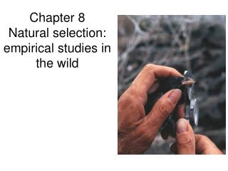 Chapter 8 Natural selection: empirical studies in the wild