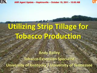 Utilizing Strip Tillage for  Tobacco Production