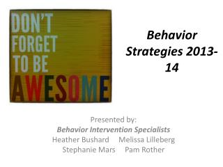 Behavior Strategies 2013-14