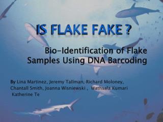 Bio-Identification of Flake Samples Using DNA Barcoding