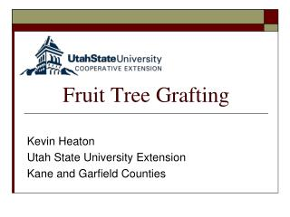 Fruit Tree Grafting
