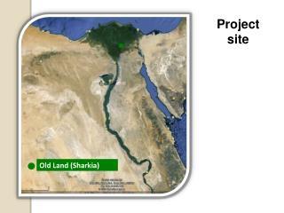 Old Land ( Sharkia )