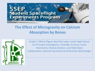 The Effect of Microgravity on Calcium Absorption by Bones