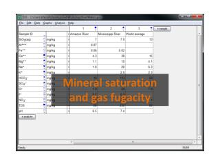Mineral saturation and gas fugacity
