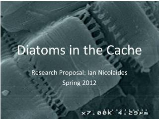 Diatoms in the Cache
